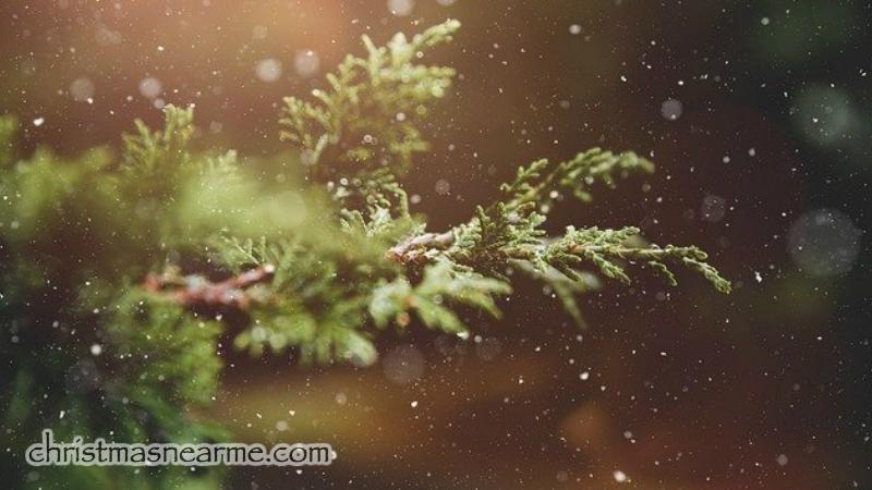 http://christmasnearme.com/
